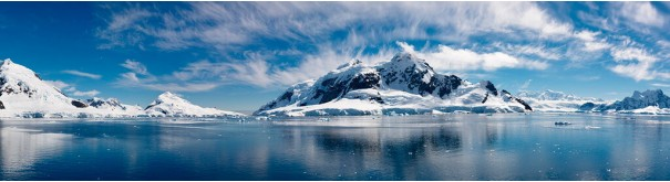 Скинали 'Айсберг в океане'
