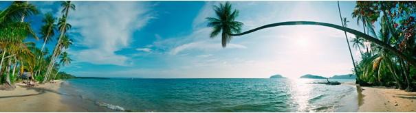 Скинали 'Пальмы на тропическом острове'