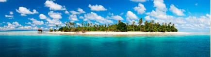 Скинали 'Таинственнй остров'