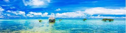Скинали 'Тихое небо над Тихим океаном'