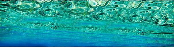 Скинали 'Подводный мир'