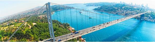 Скинали 'Мост через Босфор'