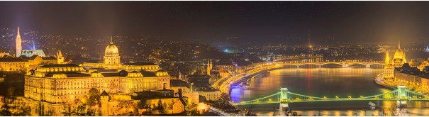 Скинали 'Вид ночного Будапешта'