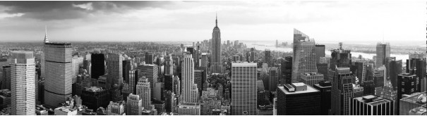 Скинали 'Черно-белый Нью Йорк'