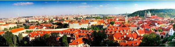 Скинали 'Красные крыши Праги'