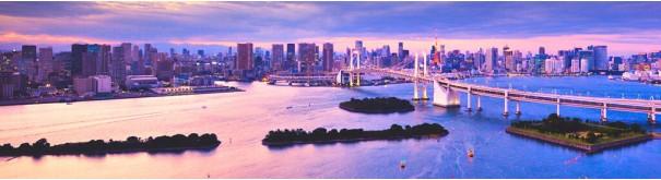 Скинали 'Мост в Токио'