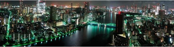 Скинали 'Огни ночного Токио'