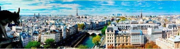 Скинали 'Вид на Париж с Нотр Даме'