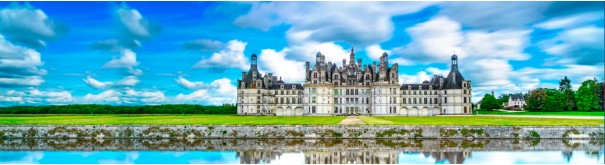 Скинали 'Замок в долине Луары'