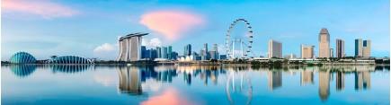 Скинали 'Утро в Сингапуре'