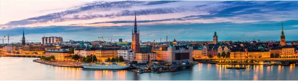 Скинали 'Панорама Стокгольма'
