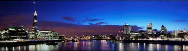 Скинали 'Огни лондонского Сити'