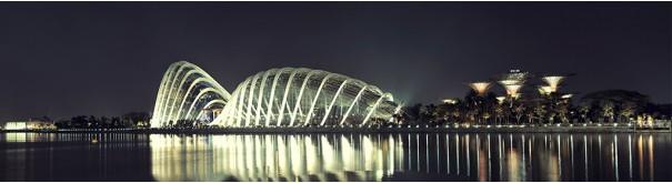 Скинали 'Огни Сингапура'