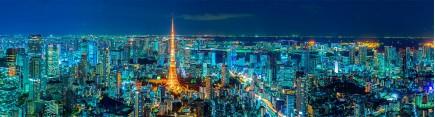 Скинали 'Ночной Токио'