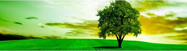 Скинали 'Зеленый пейзаж'