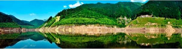 Скинали 'Альпийское озеро'