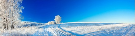 Скинали 'Русская зима'