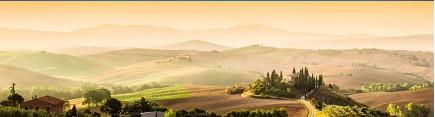 Скинали 'Утро в Тоскане'