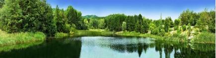 Скинали 'Лесное озеро'