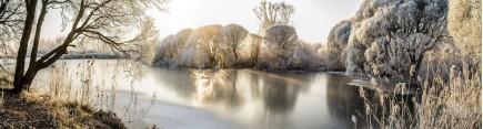 Скинали 'Озеро в зимнем лесу'