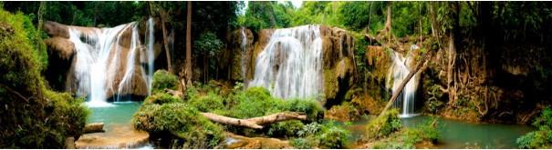 Скинали 'Водопад в лесной чаще'