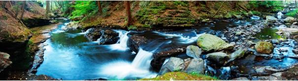 Скинали 'Шумный лесной поток'