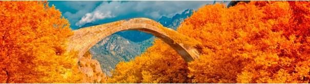 Скинали 'Горбатый мост. Швейцария'