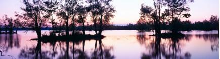 Скинали 'Сумерки. Лесное озеро'