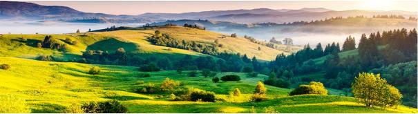 Скинали 'Зеленые холмы Тосканы'