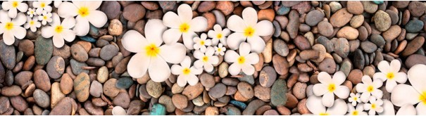 Скинали 'Цветы на пляже'