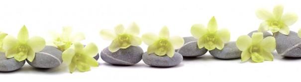 Скинали 'Зеленые орхидеи. Дзен'