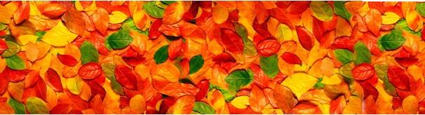 Скинали 'Осенние листья'