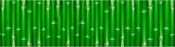 Скинали 'Зеленые стебли бамбука'