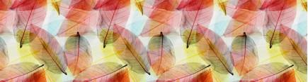 Скинали 'Мозаика из листьев'