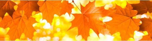 Скинали 'Желтые листья клена'
