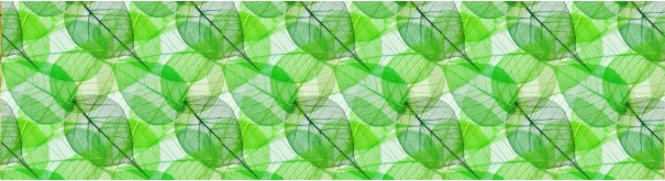 Скинали 'Узор зеленых листьев'