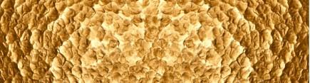 Скинали 'Золотая текстура'