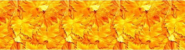 Скинали 'Золотые листья'