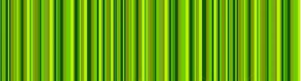 Скинали 'Зеленые полосы'
