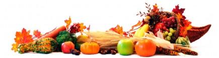 Скинали 'Осенний натюрморт'