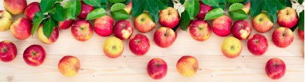 Скинали 'Яблоки нового урожая'