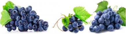 Скинали 'Гроздья винограда'
