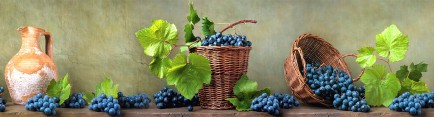 Скинали 'Виноградные корзины'