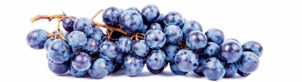 Скинали 'Черный виноград'