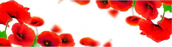 Скинали 'Цветы лугового мака'