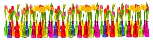 Скинали 'Тюльпаны и нарциссы'