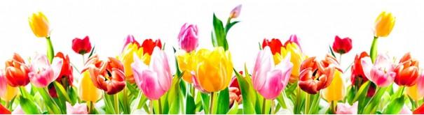 Скинали 'Букет тюльпанов'