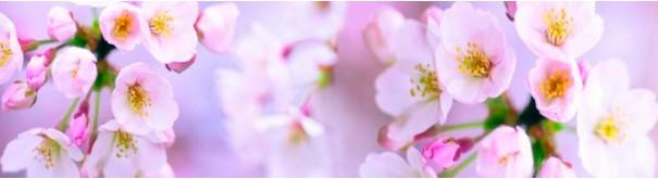 Скинали 'Яблони в цвету'