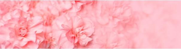 Скинали 'Фон из розовых лепестков'
