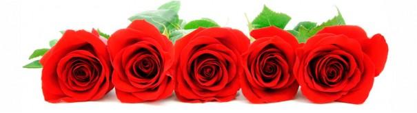 Скинали 'Розы'